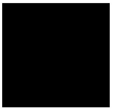 CINCH VANILLA